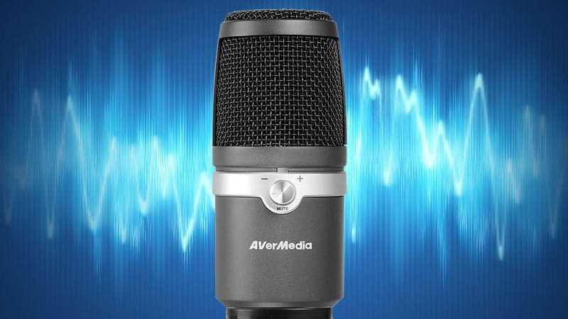 Mikrofon Am310