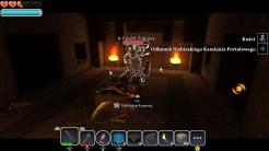 Portal Knights (10)