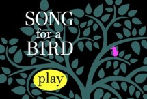 Song for a Bird