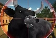 Bull Shooting