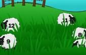 Farm Freakout Division