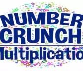 Number Crunch Multiplication