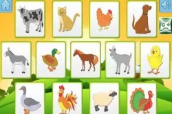 fun learning animal