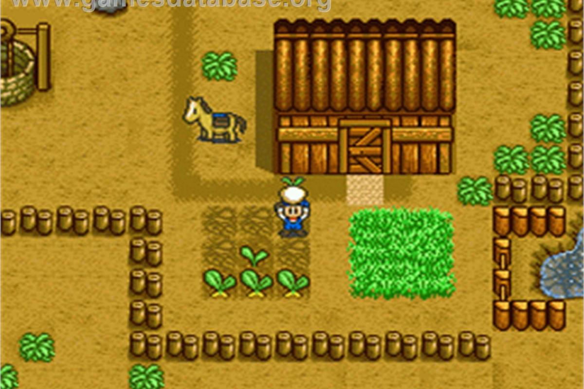 download game harvest moon back to nature gba
