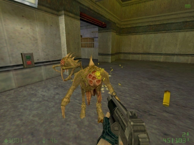 Half Life Opposing Force Video Game