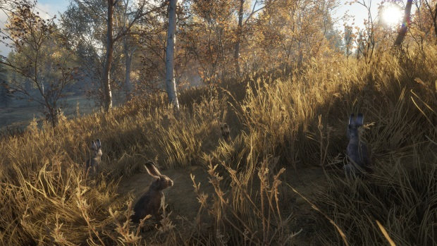 theHunter Call of the Wild New Species 2018 Screenshots
