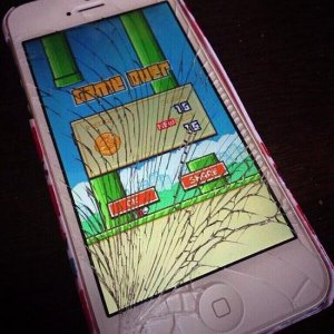 Flappy-Bird-Review