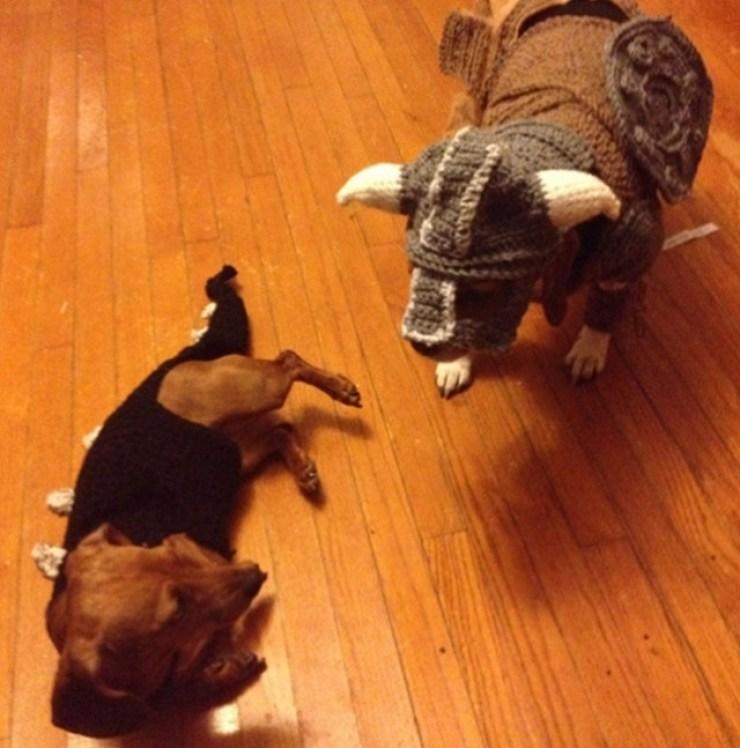 Skyrim-Dogs