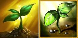 plant diff