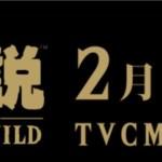 『ゼルダの伝説 ブレスオブザワイルド』1日限定TVCM特別編が初代ゼルダの発売日2月21日に公開!