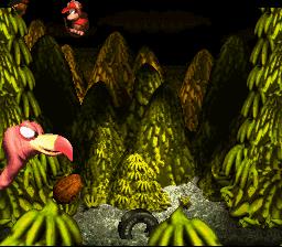 Donkey Kong Country_00053