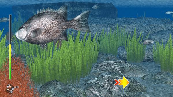 reelfishing2