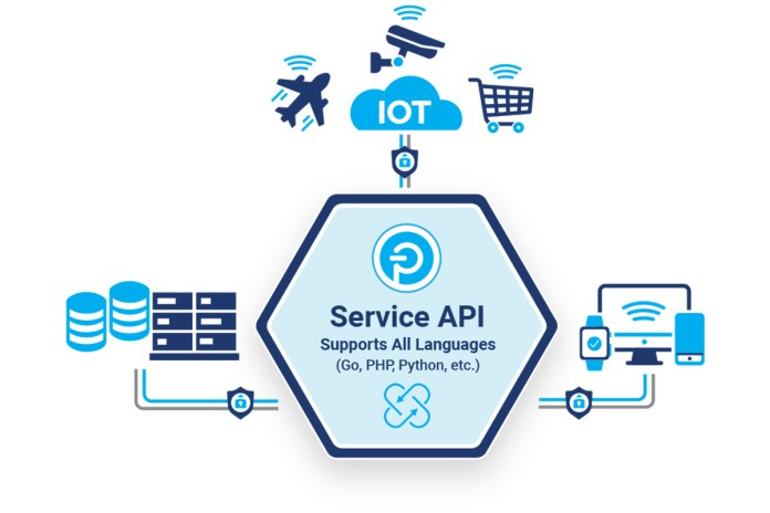 Push Technology Launches Service API
