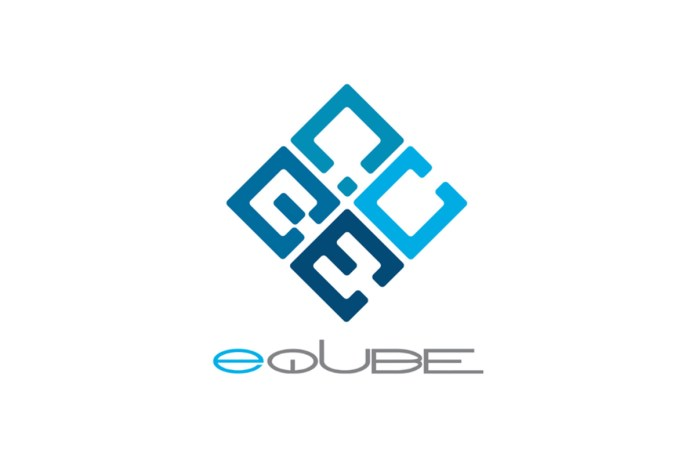 eQube Gaming Appoints Amy Janko as CFO