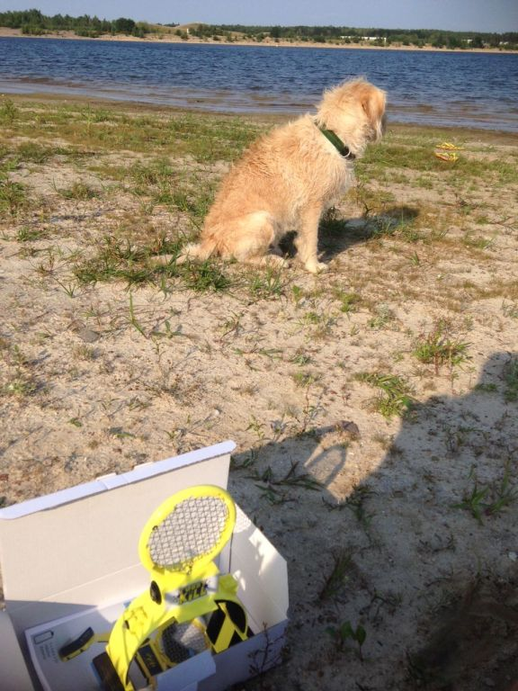 Hund fand es nicht so toll. :) (Foto: Sven Wernicke)