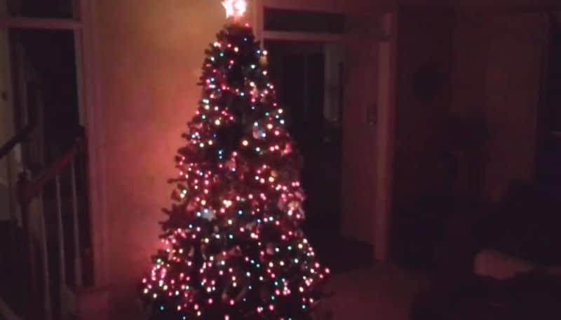 bunte weihnachten baumspitze und lichterketten chaos im. Black Bedroom Furniture Sets. Home Design Ideas