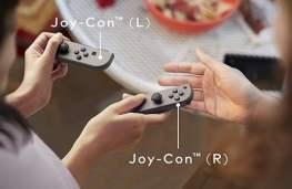 Zwei Teile, zwei Spieler. (Foto: Nintendo)