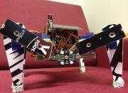 Cardboard Spider: Spinnenroboter aus Pappe gebaut
