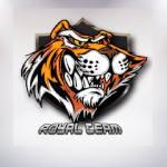 Royal Team: nova lineup brasileira de LoL