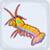 yellow mantis shrimp