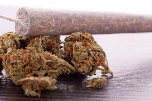 Gov. Tony Evers' Marijuana Plan for Wisconsin - Carlos Gamino