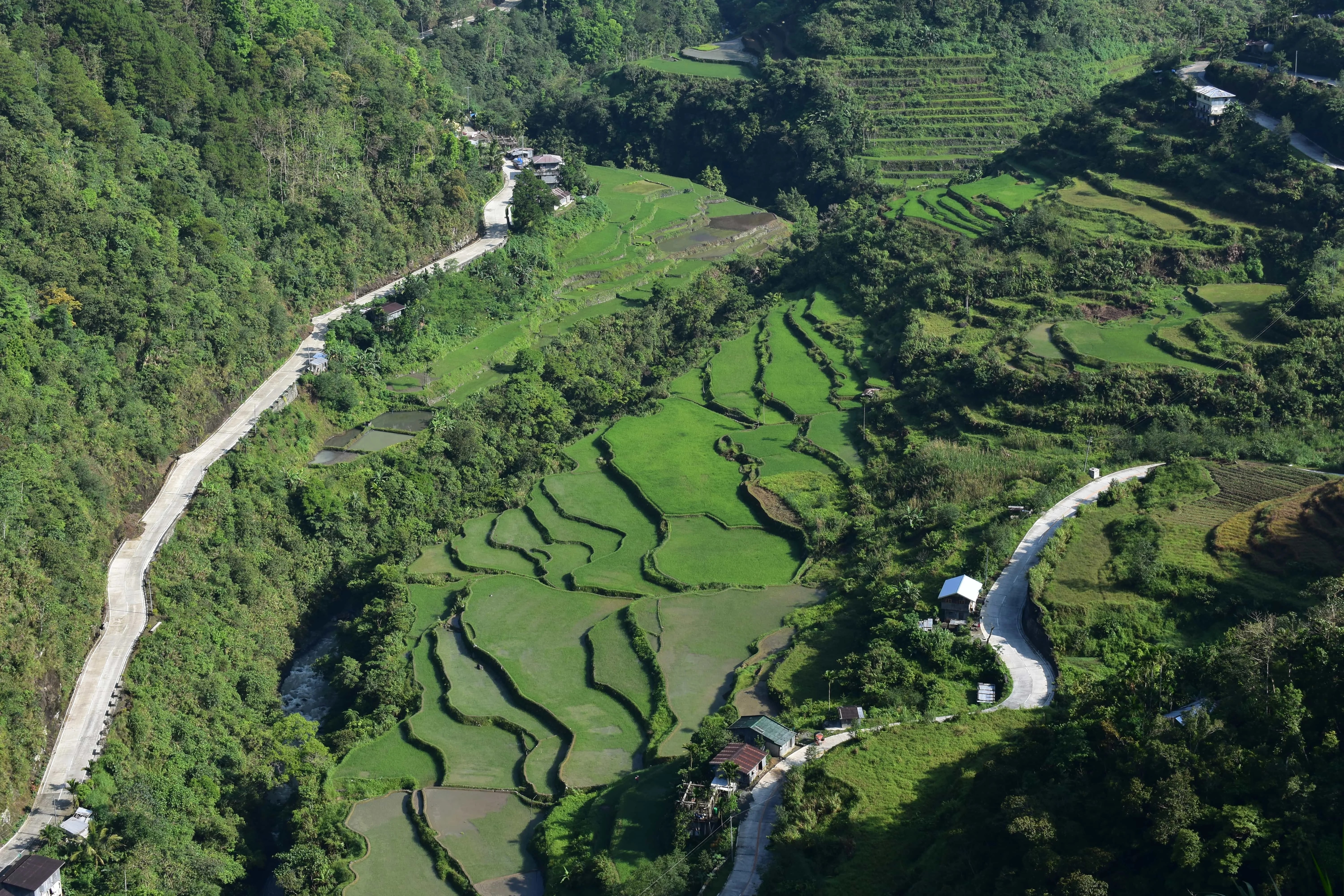 One of the reasons of visiting Banaue is Hapao Rice Terraces