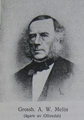 Adolph Wilhelm Melin