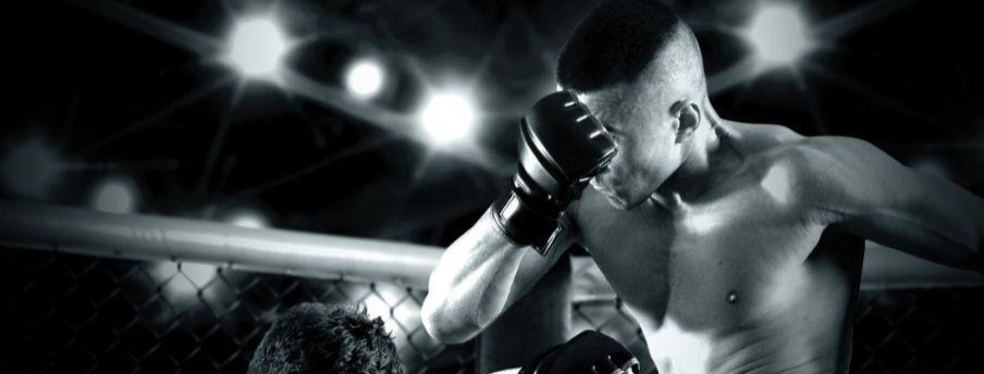 GAMMA Supports Belarus Efforts To Develop The Sport Through The MMA Team World Cup