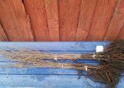 Rødel, kvælstof og mykorrhiza