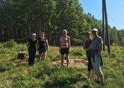 Skovhaveferie/skogsträdgårdssemester