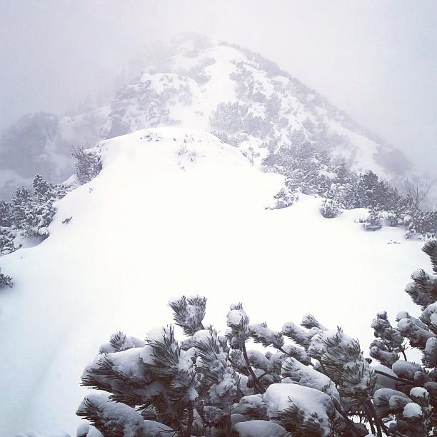 #alpen #kramer #snow