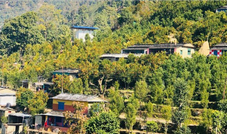 पर्वतको एकै गाउँबाट चार करोडको सुन्तला बिक्री