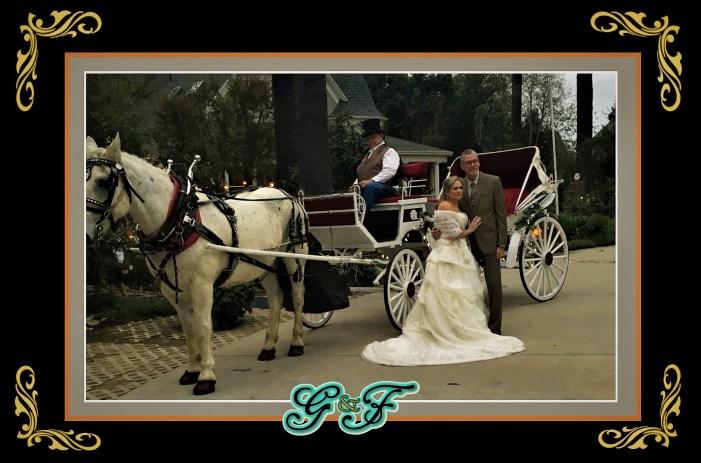 G&F Vis-a-Vis Weddings