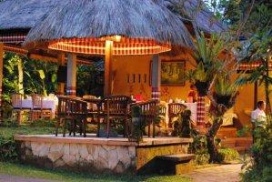 hotel saren indah ubud4