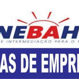 Confira as vagas do SineBahia para esta quarta-feira (19) em Salvador e Interior do estado