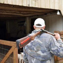 Comissão da Câmara aprova porte de arma de fogo para proprietários e trabalhadores rurais