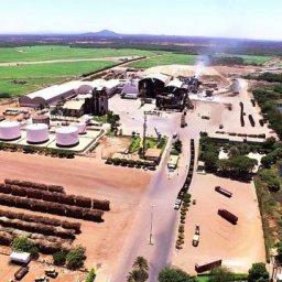 Agronegócio tem perspectivas positivas para 2019 na Bahia