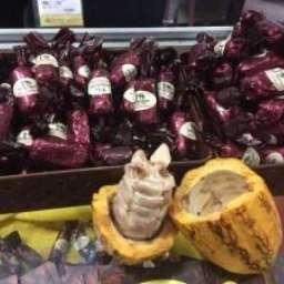 Chocolate de origem do Sul da Bahia conquista consumidores de São Paulo