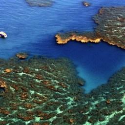 Após manchas de óleo, Parque Nacional de Abrolhos é reaberto para visitação