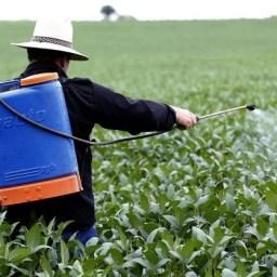 Um terço dos agrotóxicos usados no Brasil inclui alguma substância proibida pela UE