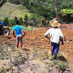 Ações da Prefeitura impulsionam agricultura familiar em Piraí do Norte