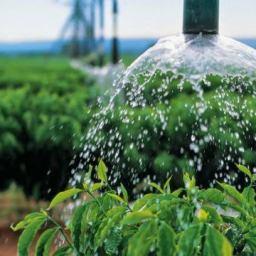 Estabelecimentos com uso de agricultura irrigada crescem em mais de 50% em 11 anos