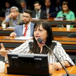 """""""A SUSPENSÃO DE ENERGIA E ÁGUA DEVE SER PROIBIDA NESSE PERÍODO"""", PROPÕE ALICE PORTUGAL"""