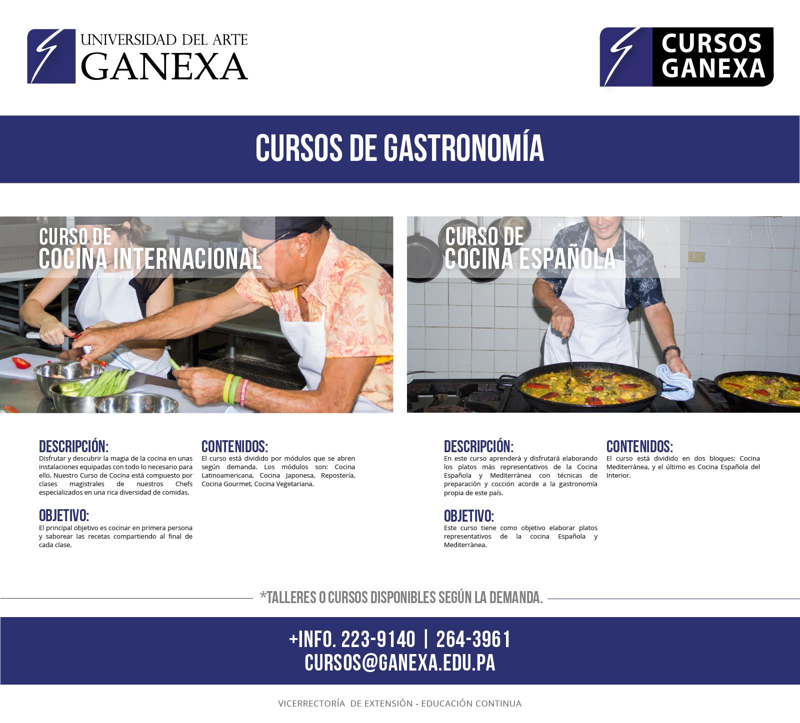 Cursos de cocina universidad del arte ganexa for Universidad de arte