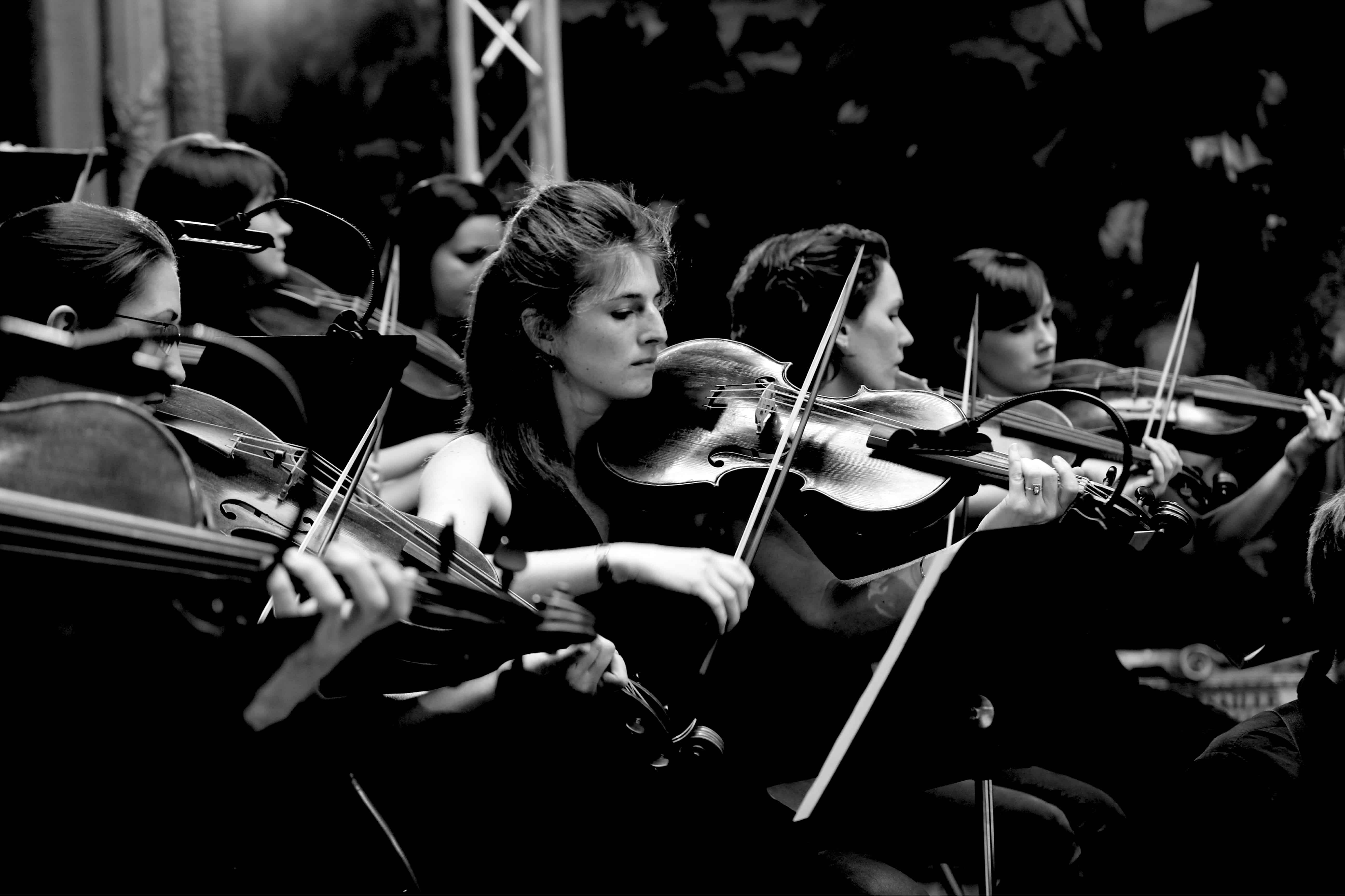 Violons - Centre de Musique Baroque de Versailles. Crédit photo : Chabridon
