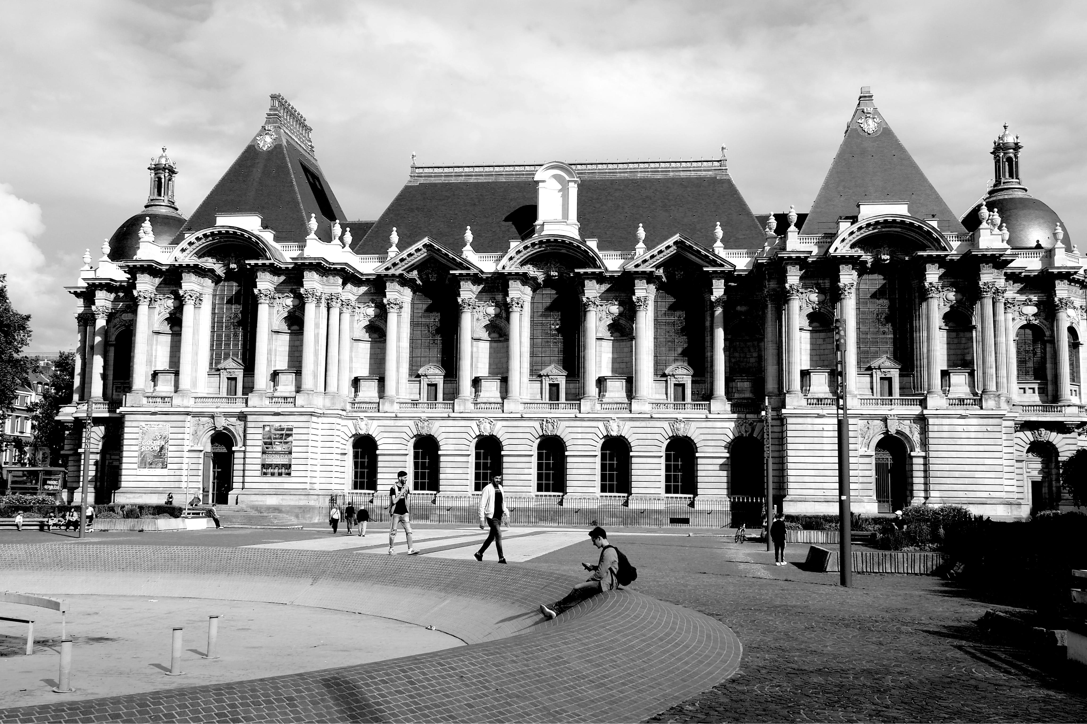 Musée du Grand Palais. Lille.