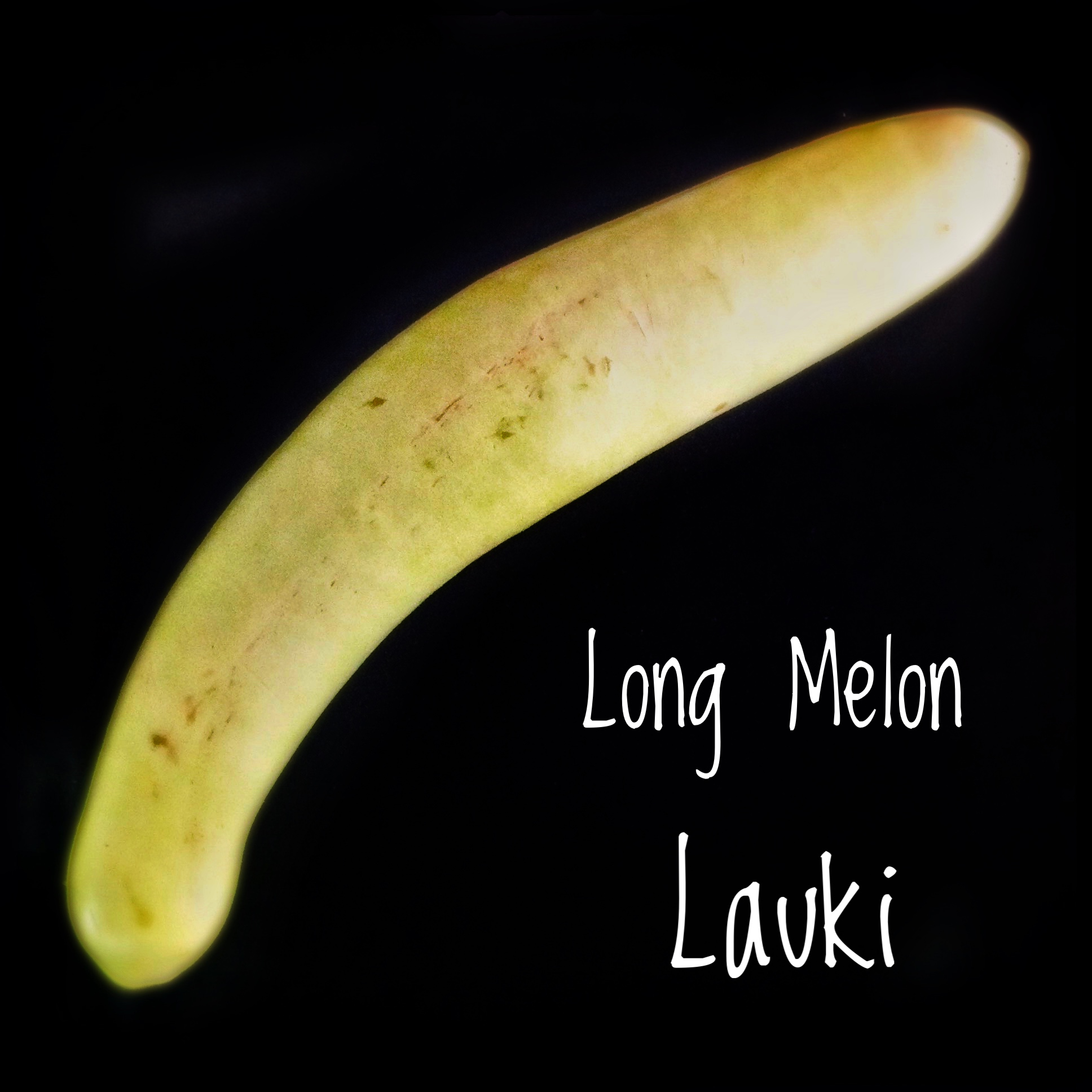 Ingredients: Long Melon | Bottle Gourd | Lauki