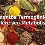 Alimentos Termogênicos  Acelere seu Metabolismo