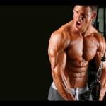 Os 6 melhores e eficientes exercícios para tríceps + os top 10 planos de treinamento
