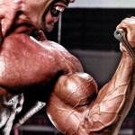 Os seis melhores exercícios para bíceps